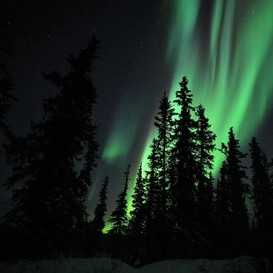 Yellowknife Aurora at the Made